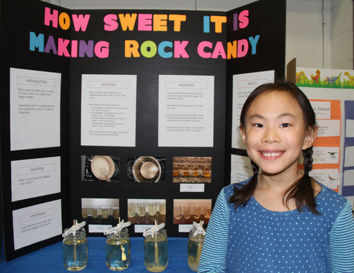 The Lower School Science Fair
