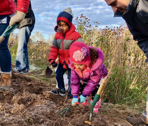 Making Memories in Kristy's Meadow: Lower School families plant bulbs to ring the meadow in springtime