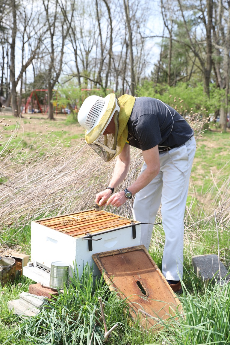 BEEhold: the BEEautiful and UnBEElievable Science of Bees