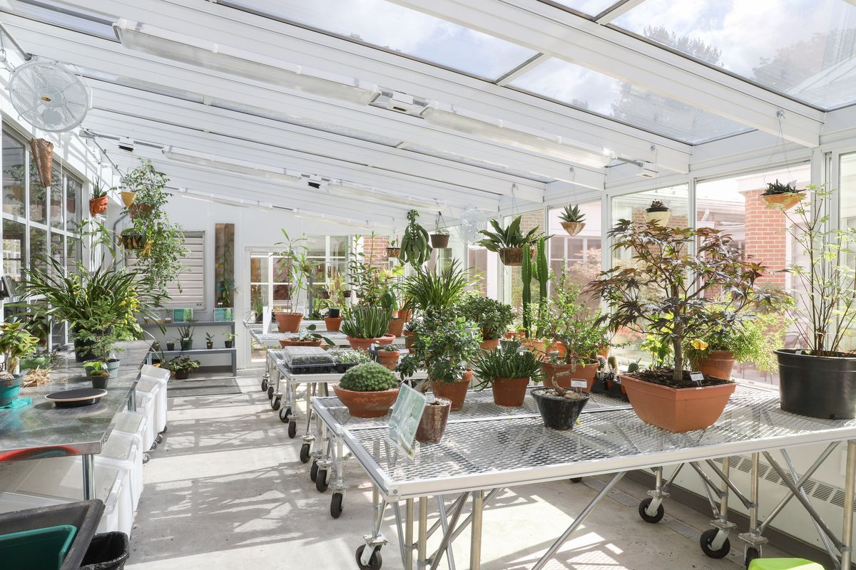 Isaac's Greenhouse and Penny Wallace '69 Courtyard Create Interdisciplinary Space